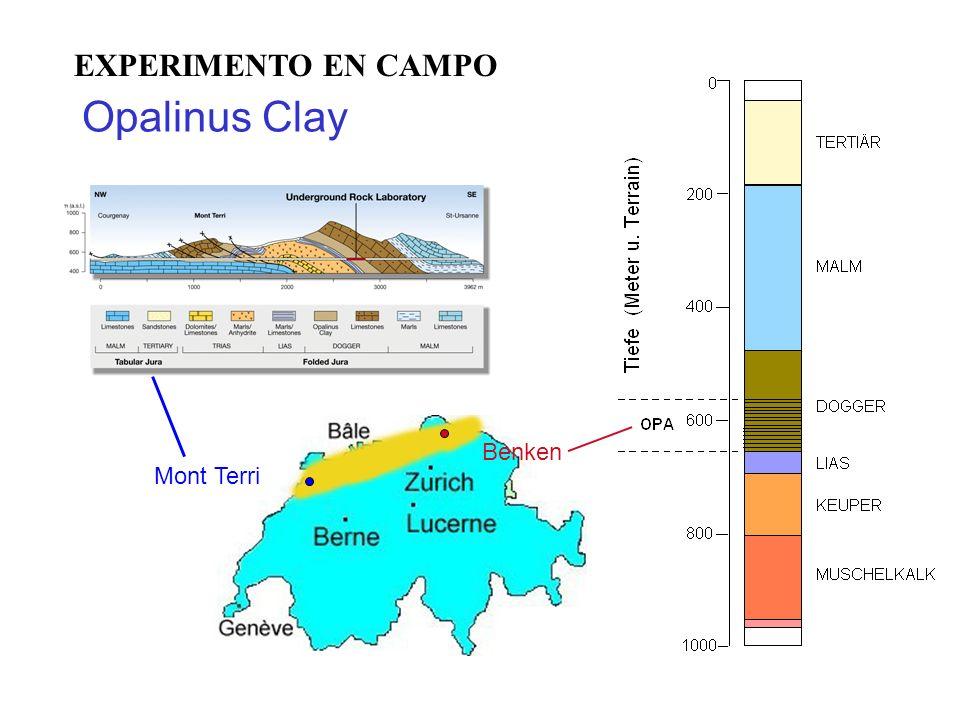 EXPERIMENTO EN CAMPO Opalinus Clay Benken Mont Terri
