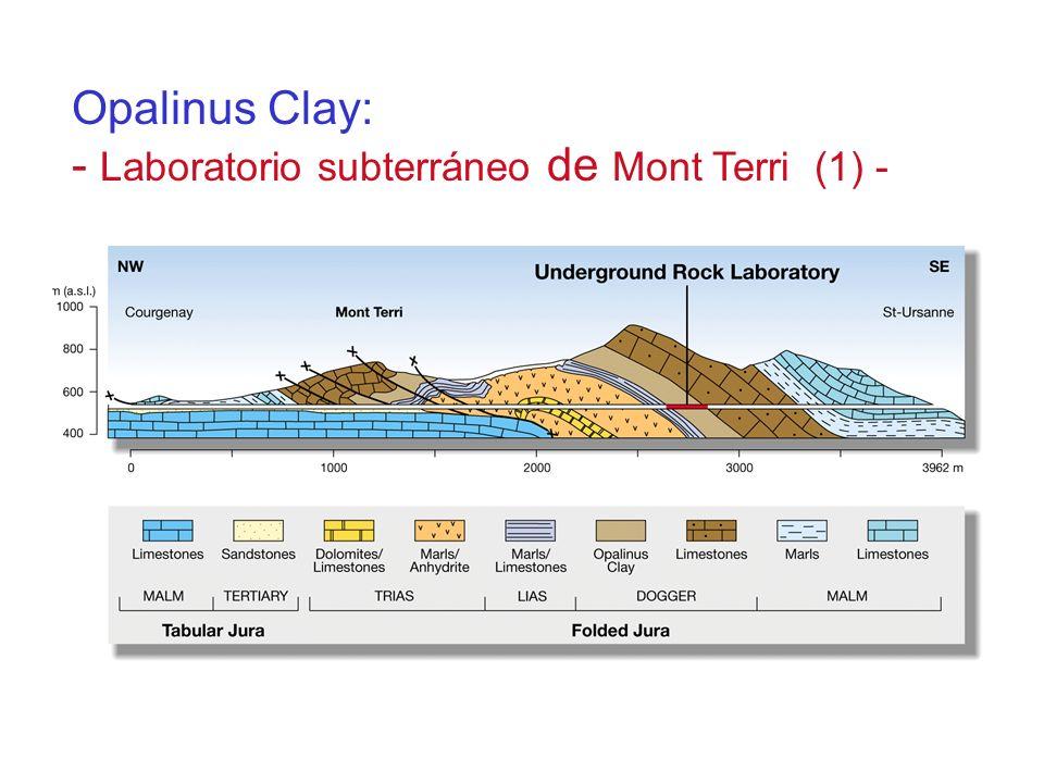 Opalinus Clay: - Laboratorio subterráneo de Mont Terri (1) -