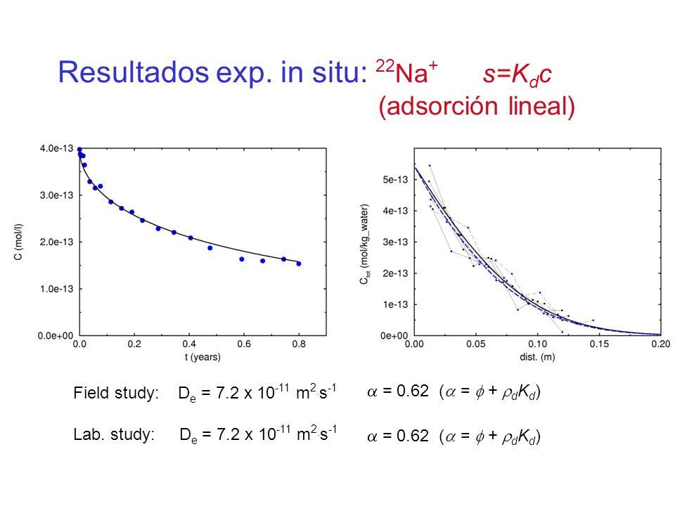 Resultados exp. in situ: 22Na+ s=Kdc (adsorción lineal)