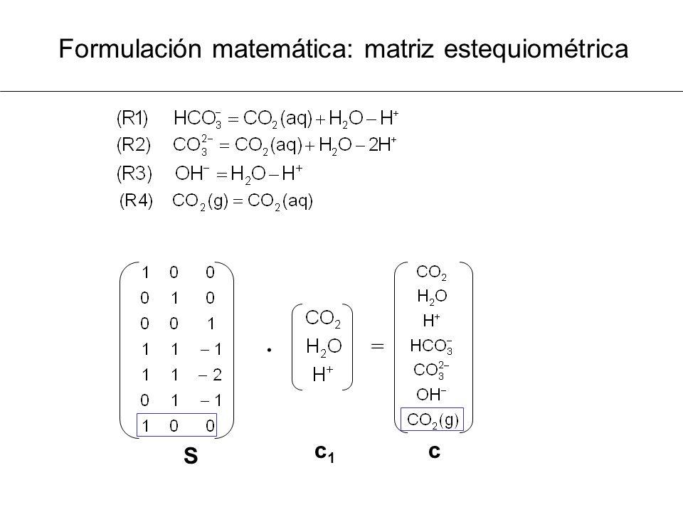 Formulación matemática: matriz estequiométrica