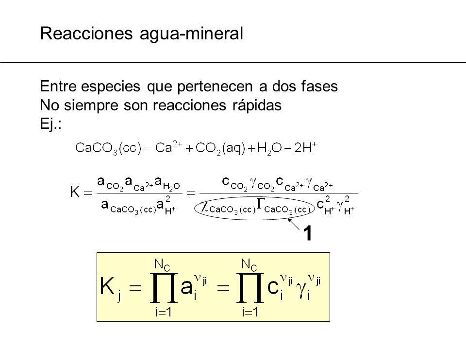 1 Reacciones agua-mineral Entre especies que pertenecen a dos fases