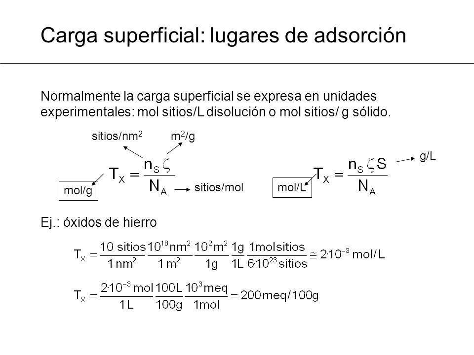 Carga superficial: lugares de adsorción