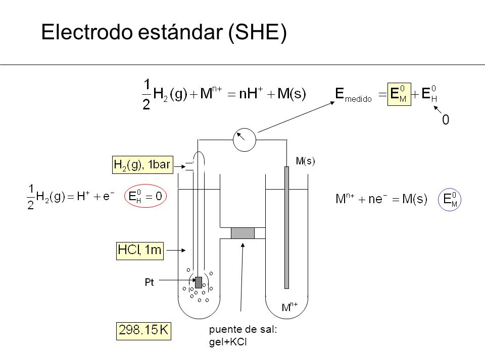 Electrodo estándar (SHE)