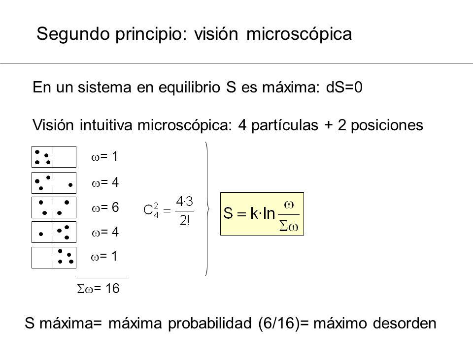 Segundo principio: visión microscópica