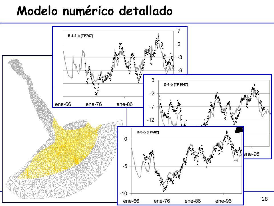 Modelo numérico detallado