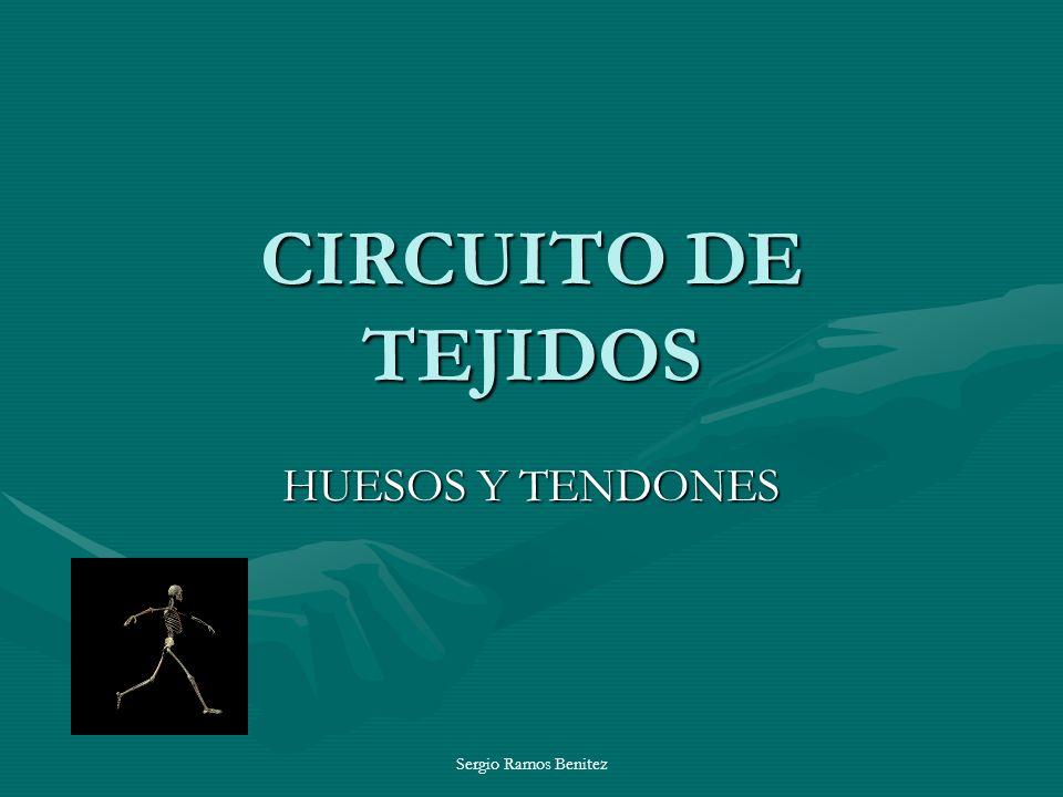 CIRCUITO DE TEJIDOS HUESOS Y TENDONES Sergio Ramos Benitez