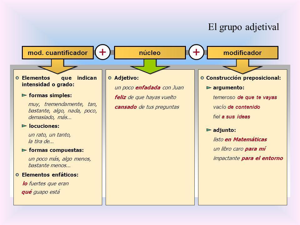 + El grupo adjetival mod. cuantificador modificador núcleo