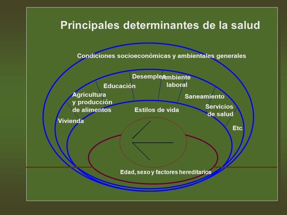 Principales determinantes de la salud