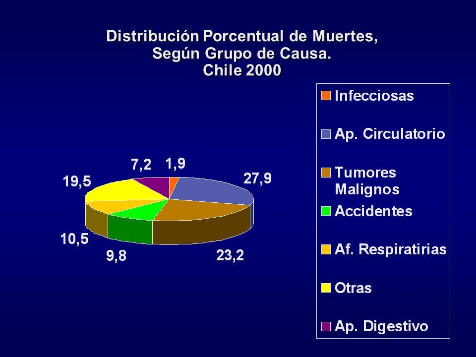 Distribución Porcentual de Muertes, Según Grupo de Causa. Chile 2000