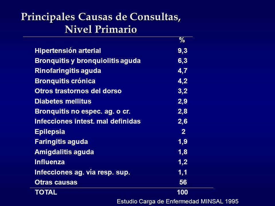 Principales Causas de Consultas, Nivel Primario