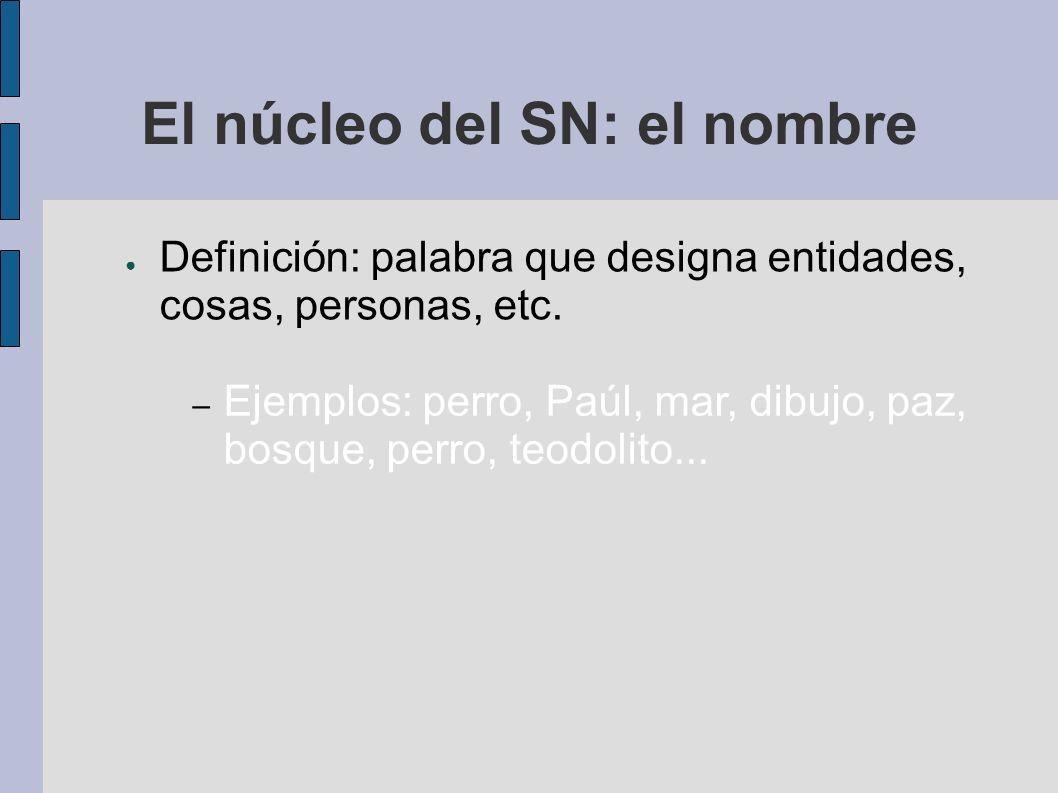 El núcleo del SN: el nombre