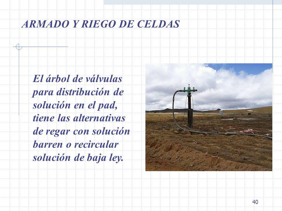 ARMADO Y RIEGO DE CELDAS