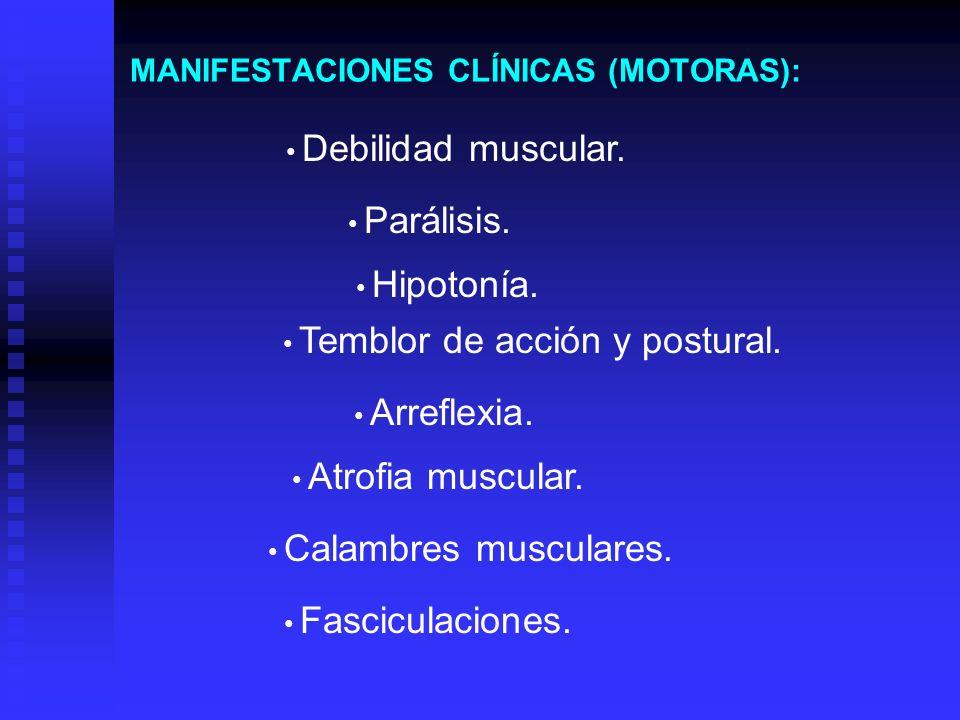 MANIFESTACIONES CLÍNICAS (MOTORAS):