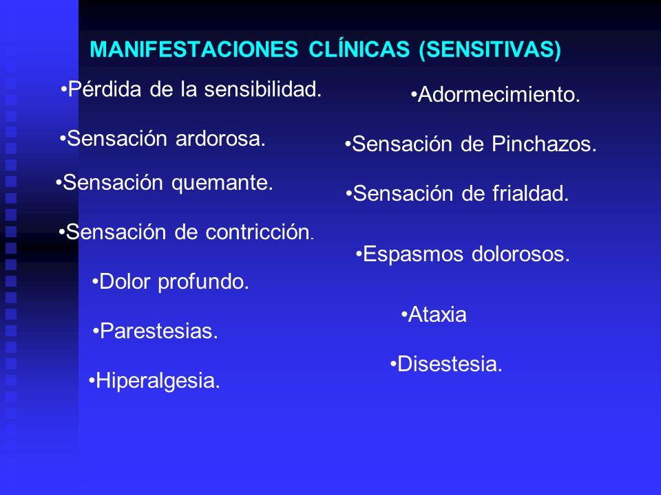 MANIFESTACIONES CLÍNICAS (SENSITIVAS)