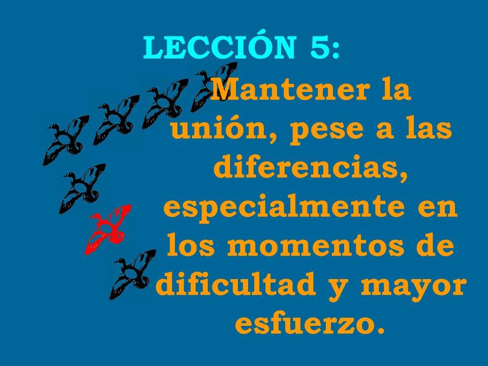 Mantener la unión, pese a las diferencias,