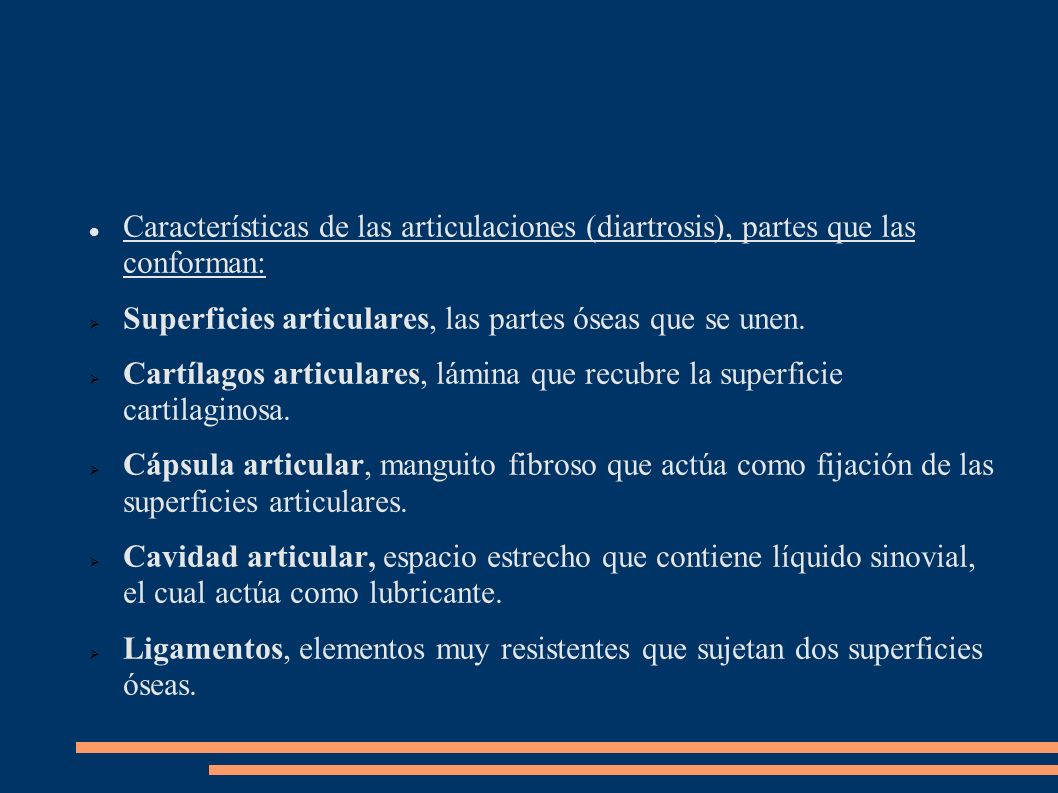 Características de las articulaciones (diartrosis), partes que las conforman: