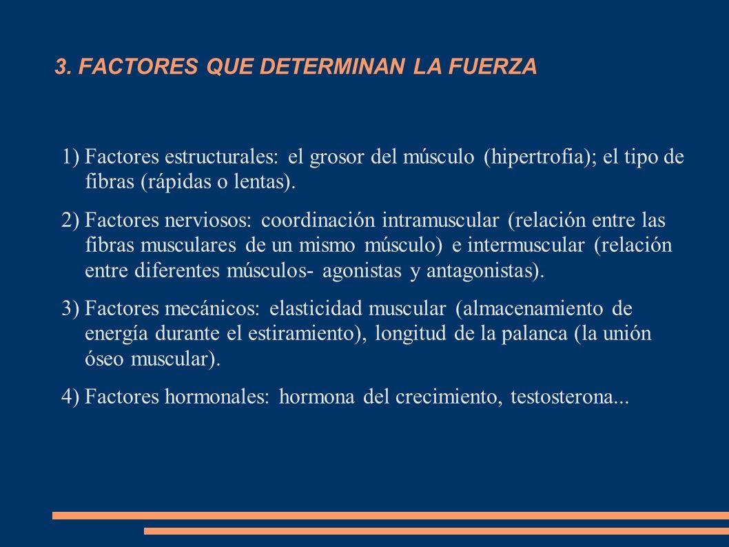 3. FACTORES QUE DETERMINAN LA FUERZA