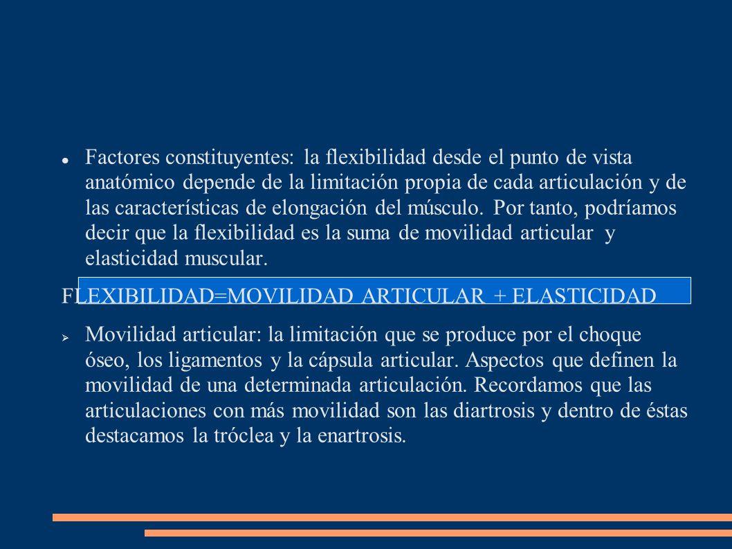 Factores constituyentes: la flexibilidad desde el punto de vista anatómico depende de la limitación propia de cada articulación y de las características de elongación del músculo. Por tanto, podríamos decir que la flexibilidad es la suma de movilidad articular y elasticidad muscular.