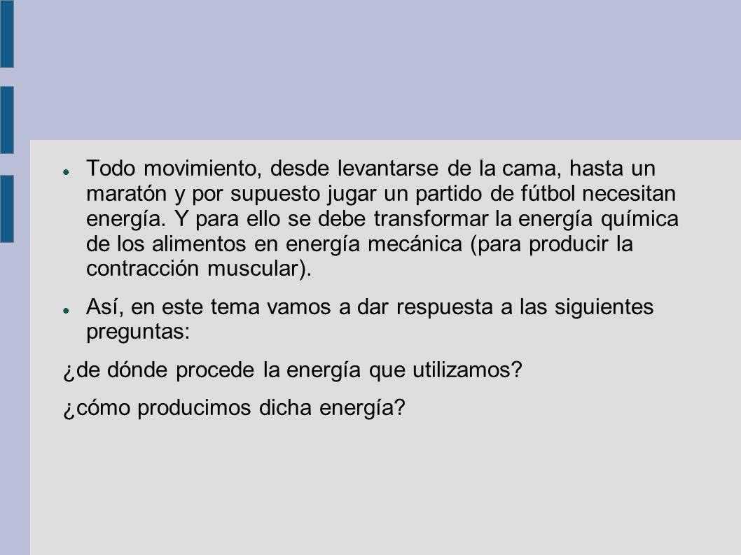 Todo movimiento, desde levantarse de la cama, hasta un maratón y por supuesto jugar un partido de fútbol necesitan energía. Y para ello se debe transformar la energía química de los alimentos en energía mecánica (para producir la contracción muscular).
