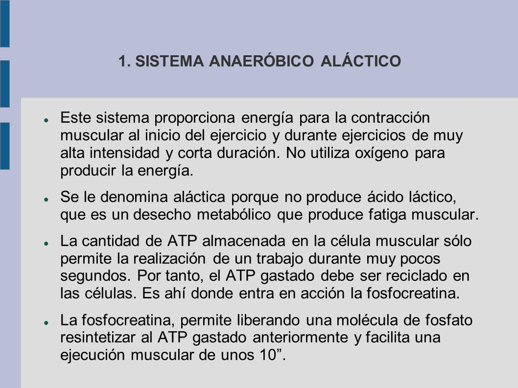 1. SISTEMA ANAERÓBICO ALÁCTICO