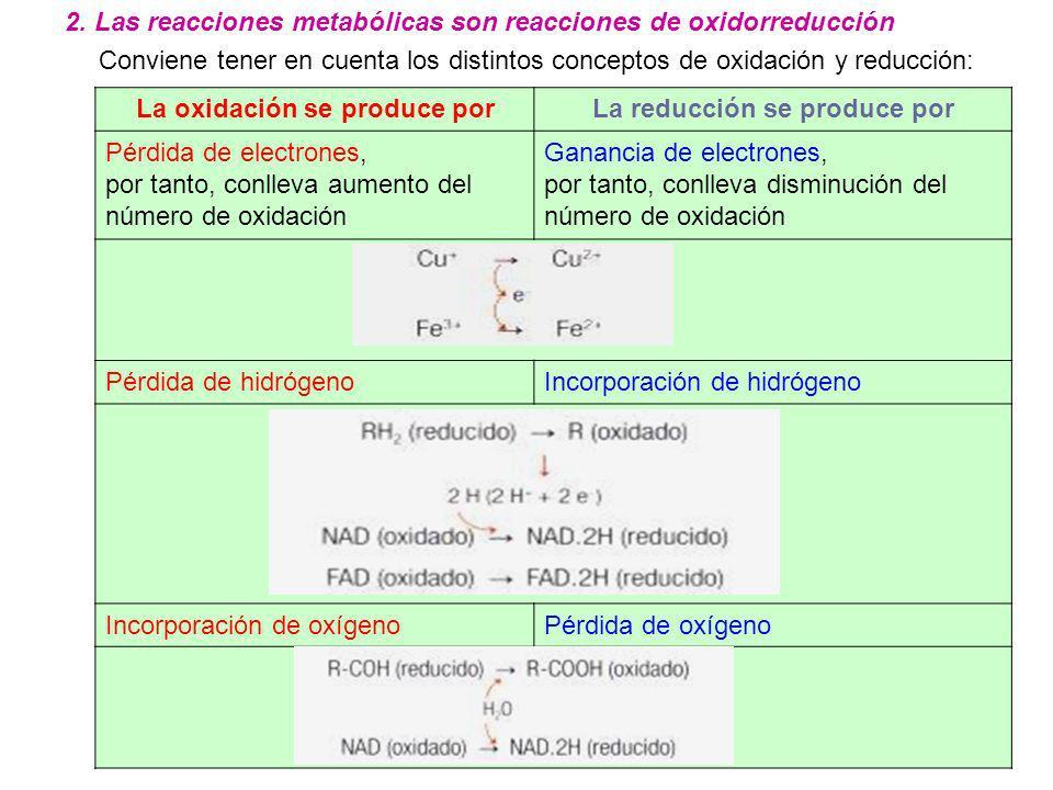 La oxidación se produce por La reducción se produce por