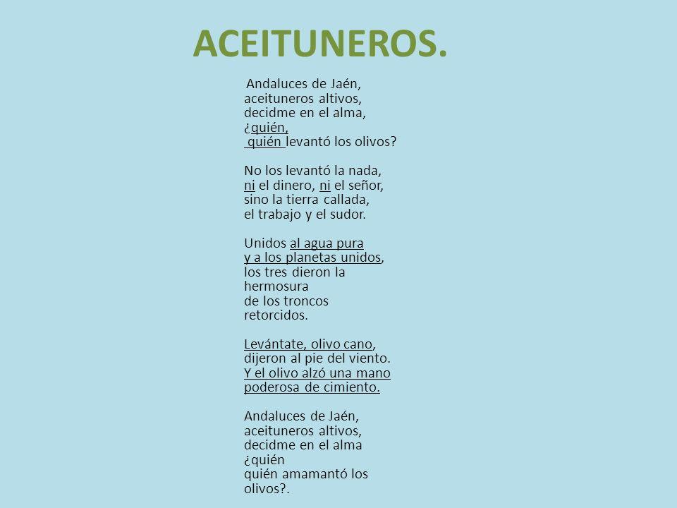 ACEITUNEROS.