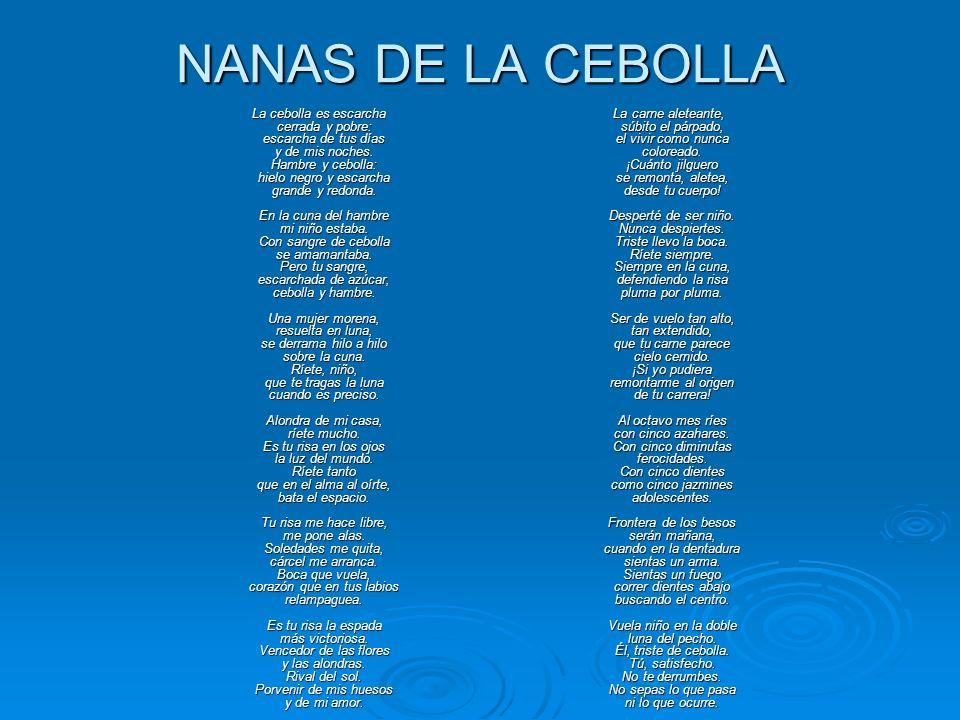NANAS DE LA CEBOLLA