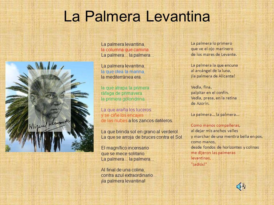 La Palmera Levantina