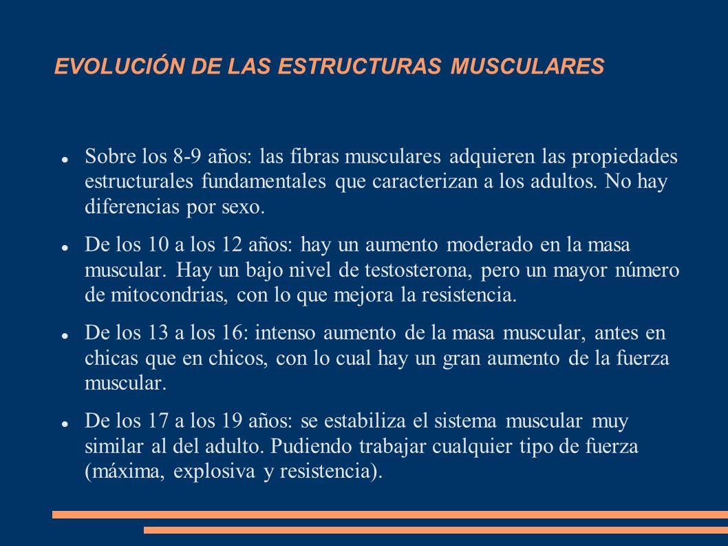 EVOLUCIÓN DE LAS ESTRUCTURAS MUSCULARES