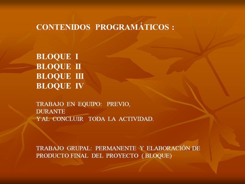 CONTENIDOS PROGRAMÁTICOS :