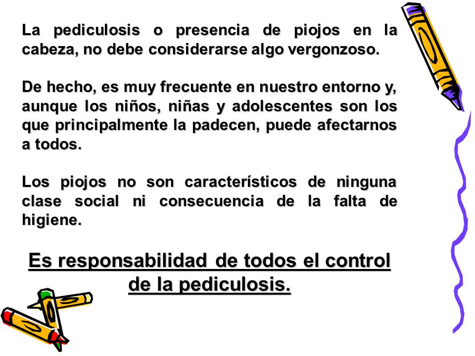 Es responsabilidad de todos el control de la pediculosis.