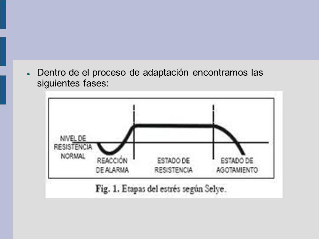 Dentro de el proceso de adaptación encontramos las siguientes fases: