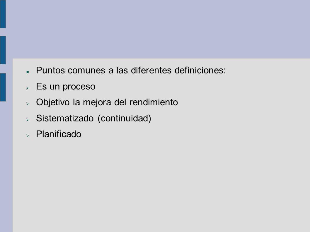 Puntos comunes a las diferentes definiciones: