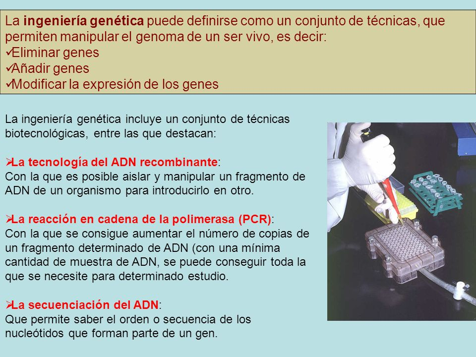 Modificar la expresión de los genes