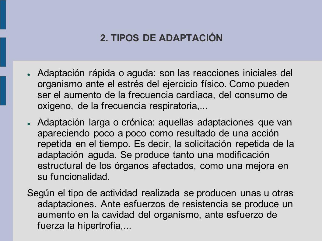 2. TIPOS DE ADAPTACIÓN