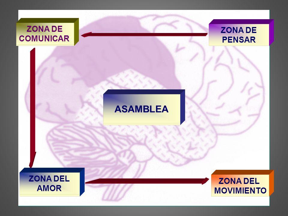 ASAMBLEA SER HUMANO ZONA DE COMUNICAR LENGUAJE ZONA DE PENSAR PROCESOS