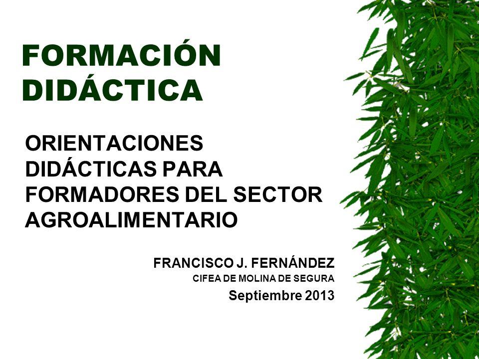 FORMACIÓN DIDÁCTICA ORIENTACIONES DIDÁCTICAS PARA FORMADORES DEL SECTOR AGROALIMENTARIO. FRANCISCO J. FERNÁNDEZ.
