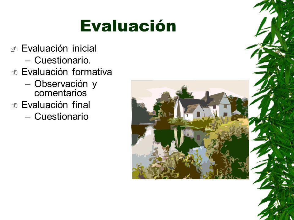 Evaluación Evaluación inicial Cuestionario. Evaluación formativa