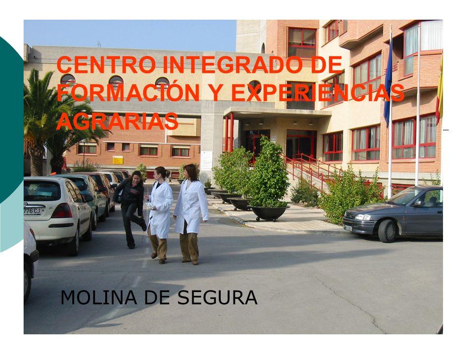 CENTRO INTEGRADO DE FORMACIÓN Y EXPERIENCIAS AGRARIAS