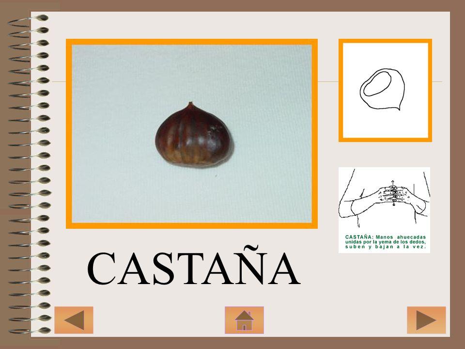 CASTAÑA