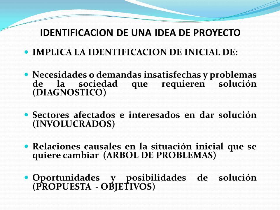 IDENTIFICACION DE UNA IDEA DE PROYECTO