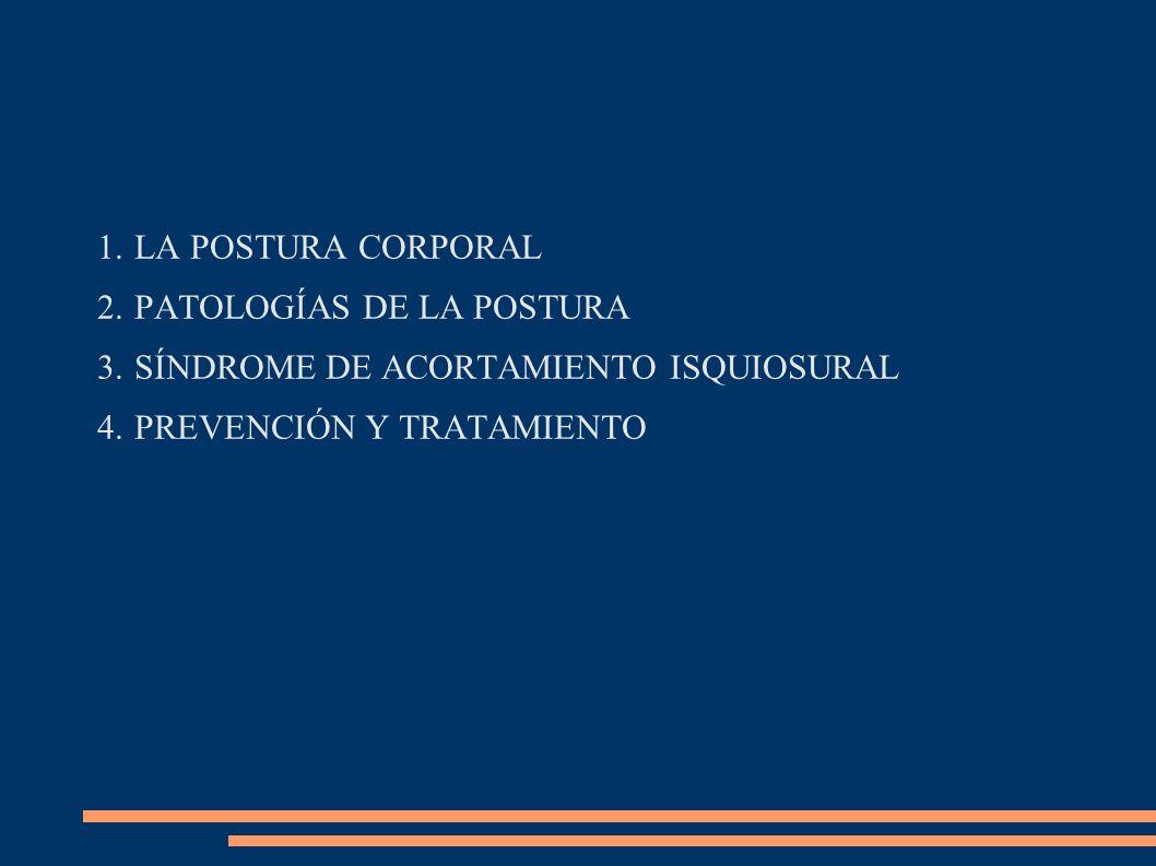 LA POSTURA CORPORAL PATOLOGÍAS DE LA POSTURA. SÍNDROME DE ACORTAMIENTO ISQUIOSURAL.