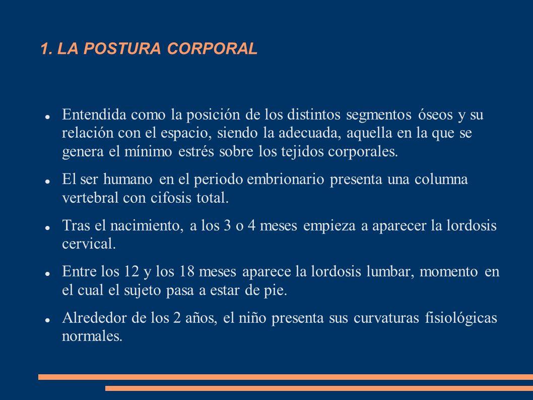 1. LA POSTURA CORPORAL