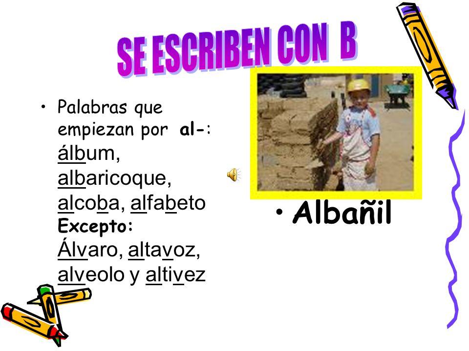 SE ESCRIBEN CON B Albañil