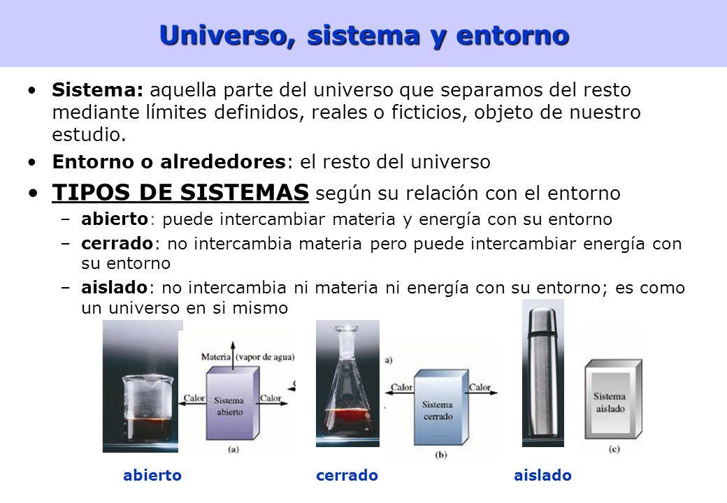 Universo, sistema y entorno