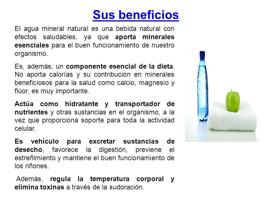 Sus beneficios