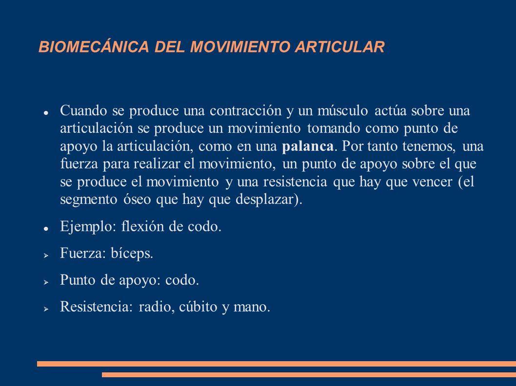 BIOMECÁNICA DEL MOVIMIENTO ARTICULAR