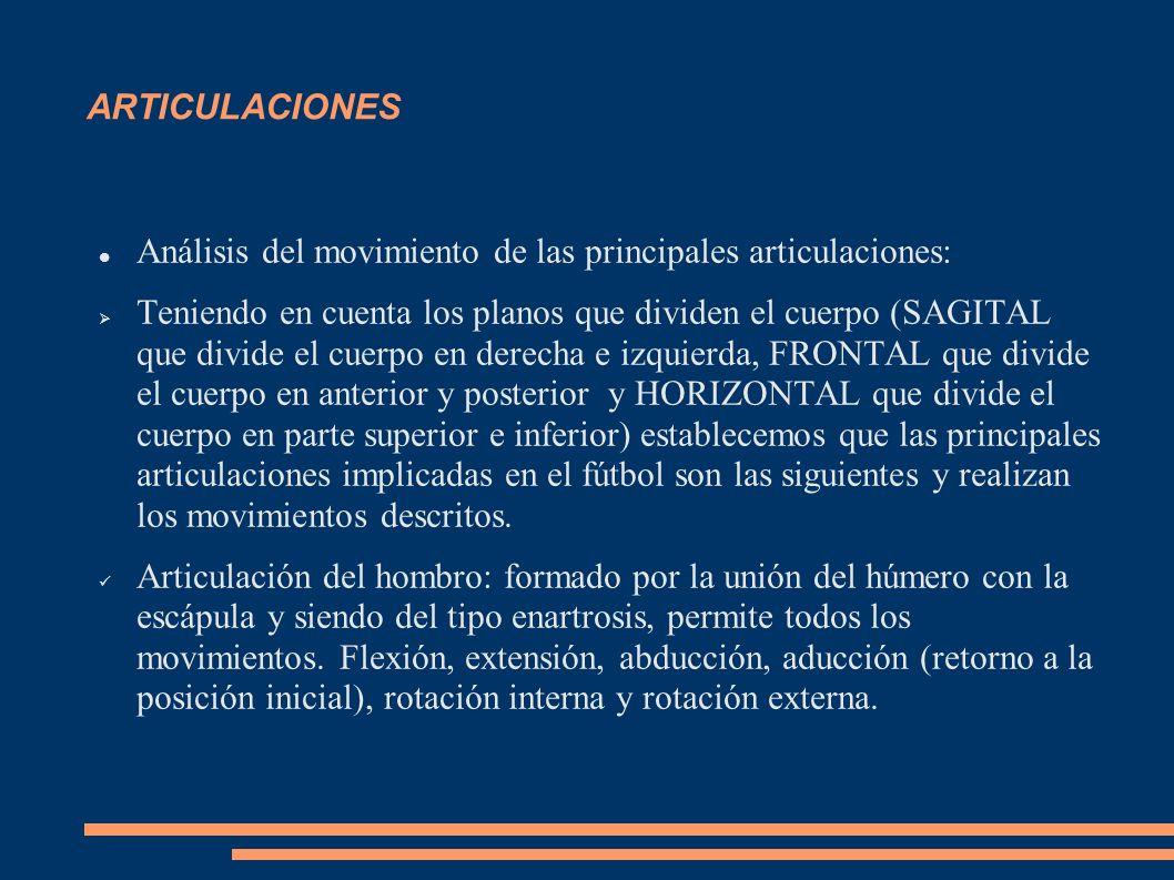 ARTICULACIONES Análisis del movimiento de las principales articulaciones: