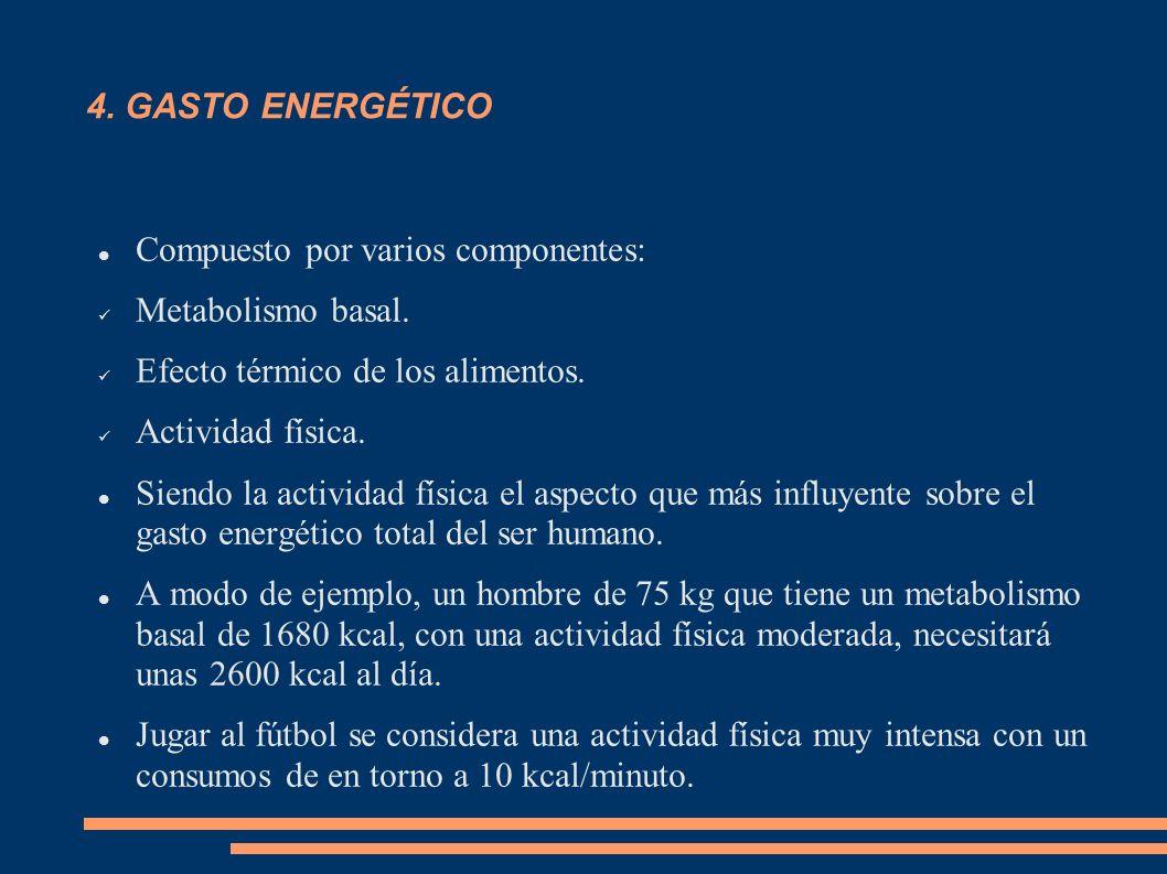 4. GASTO ENERGÉTICO Compuesto por varios componentes: Metabolismo basal. Efecto térmico de los alimentos.