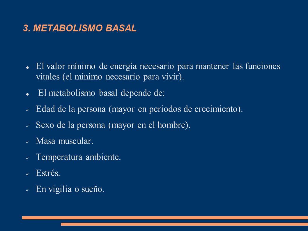 3. METABOLISMO BASAL El valor mínimo de energía necesario para mantener las funciones vitales (el mínimo necesario para vivir).